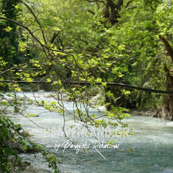 Ποτάμι Νήσσας Λουτράκι Αιτ/νίας Α21